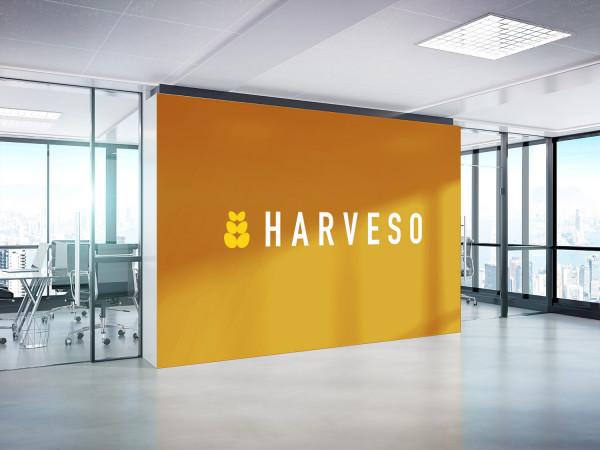 Sample branding #2 for Harveso