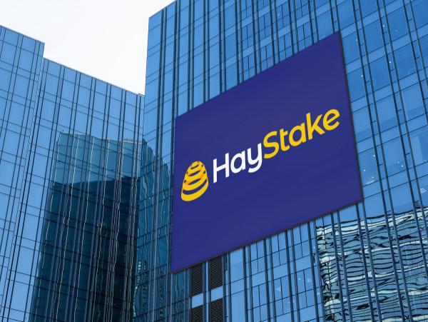 Sample branding #1 for Haystake