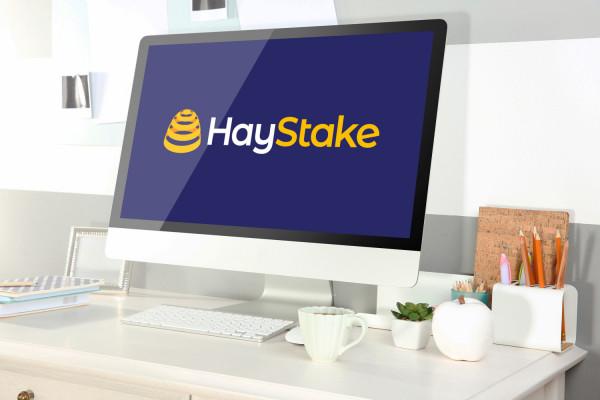 Sample branding #3 for Haystake