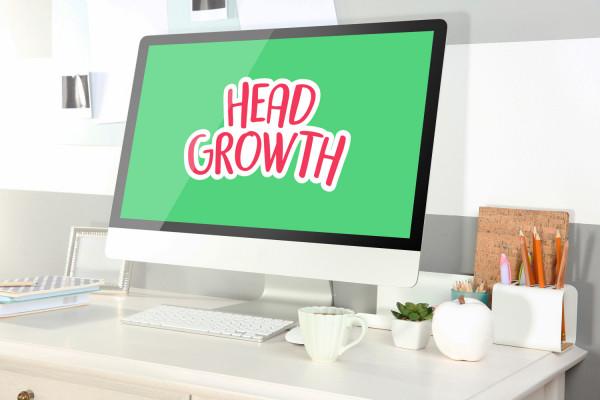 Sample branding #2 for Headgrowth