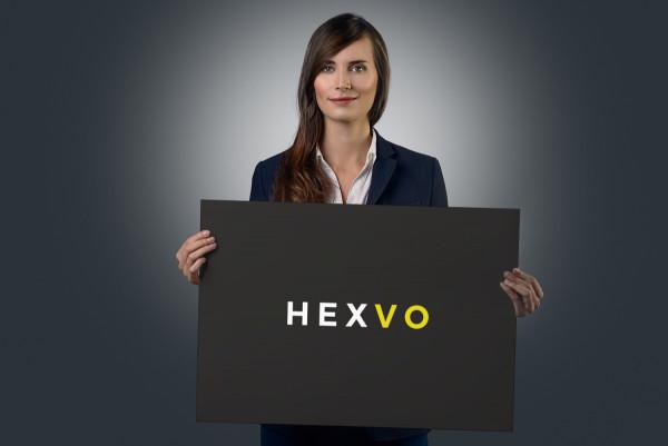 Sample branding #2 for Hexvo