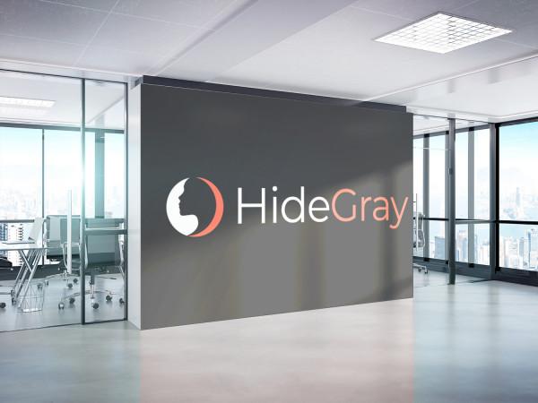 Sample branding #2 for Hidegray