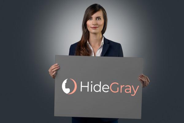 Sample branding #3 for Hidegray