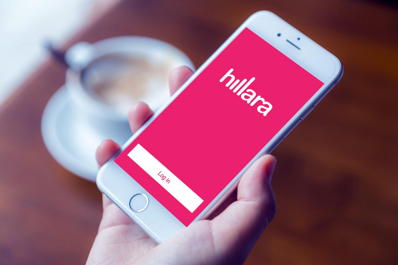 Sample branding #1 for Hillara