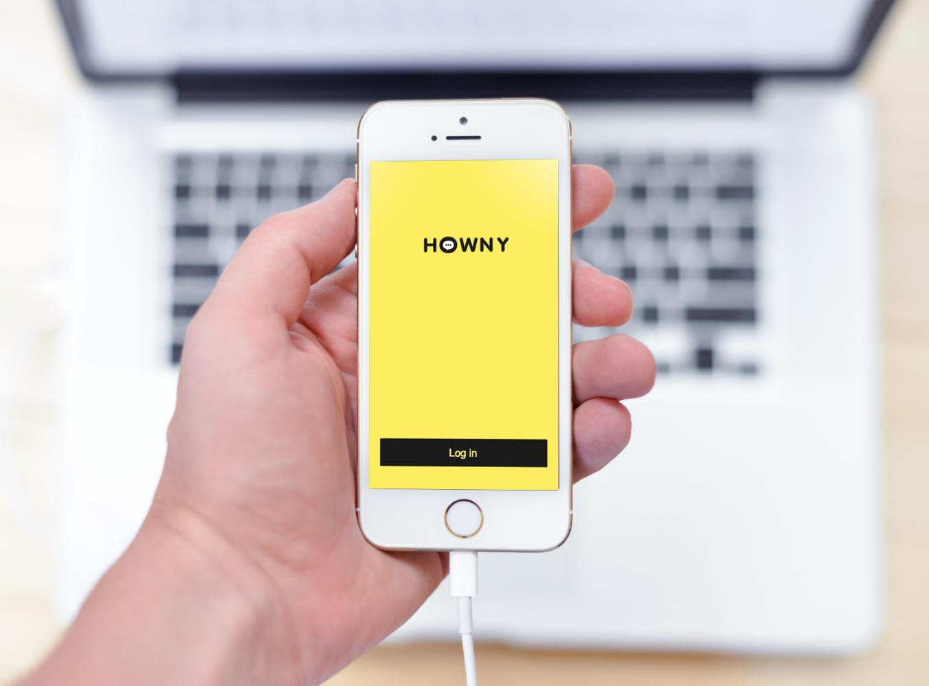 Sample branding #3 for Howny