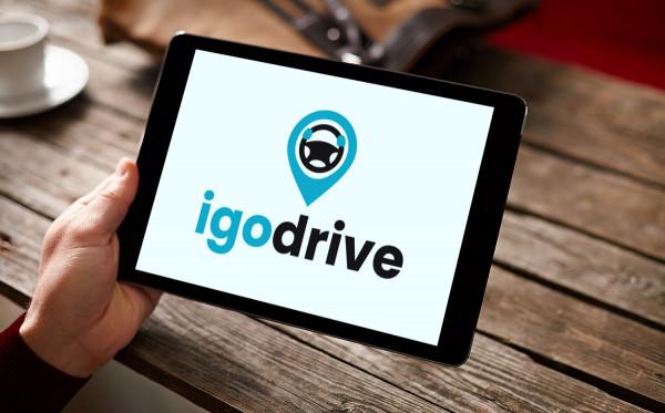 Sample branding #3 for Igodrive