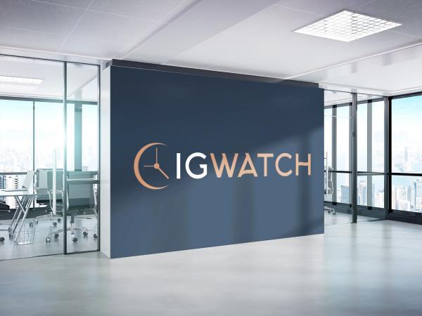 Sample branding #1 for Igwatch