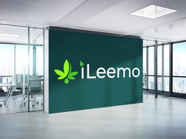 Sample branding #2 for Ileemo