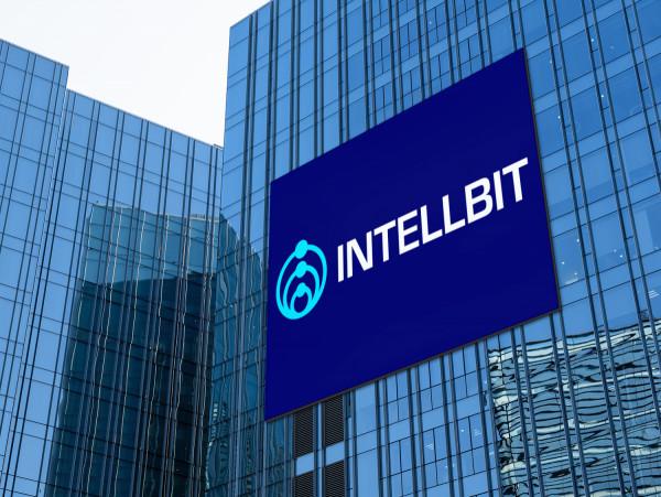 Sample branding #3 for Intellbit