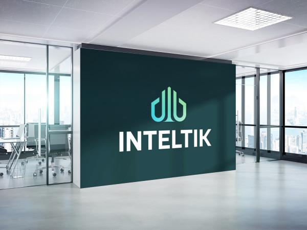 Sample branding #3 for Inteltik
