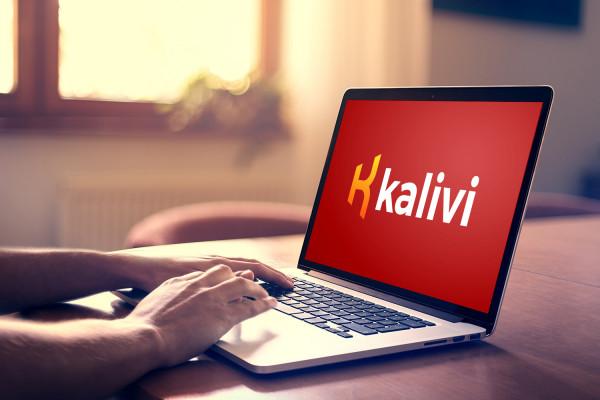 Sample branding #3 for Kalivi