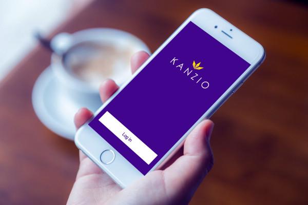Sample branding #3 for Kanzio