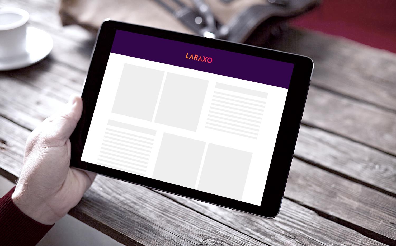 Sample branding #1 for Laraxo