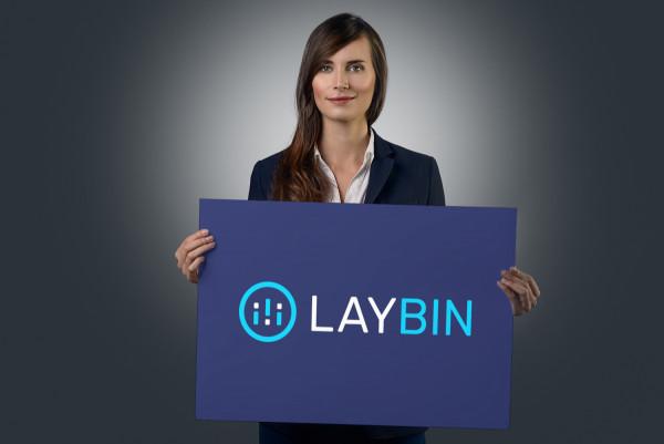 Sample branding #3 for Laybin