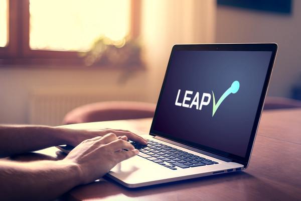 Sample branding #3 for Leapv