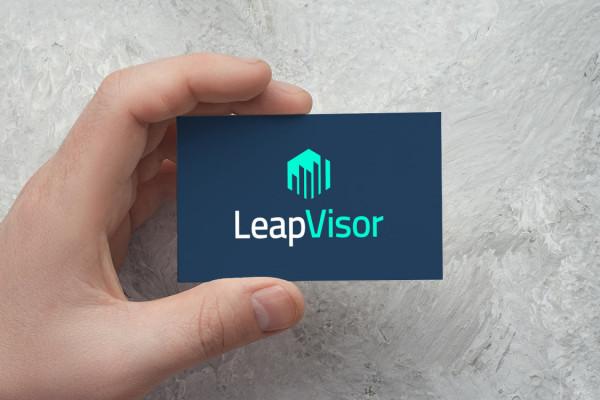 Sample branding #2 for Leapvisor