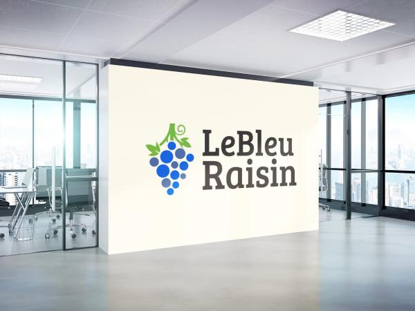 Sample branding #1 for Lebleuraisin