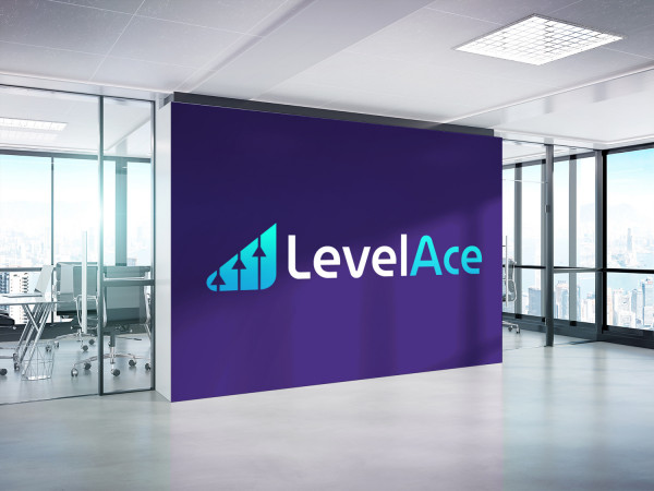 Sample branding #2 for Levelace