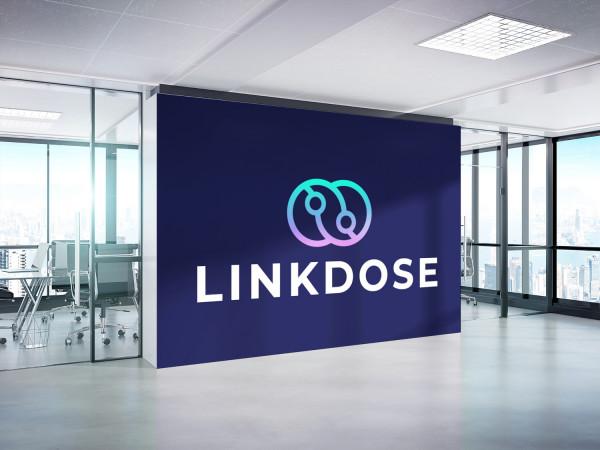 Sample branding #2 for Linkdose