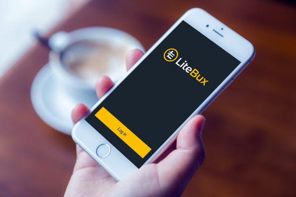 Sample branding #3 for Litebux