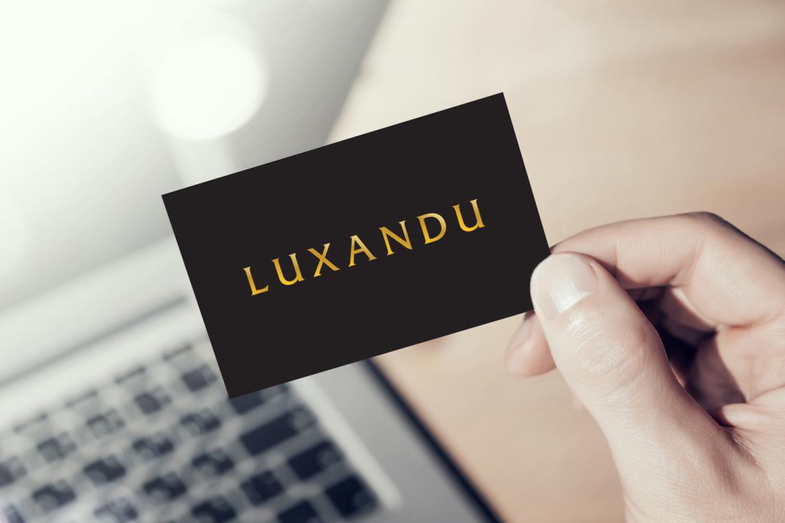 Sample branding #3 for Luxandu