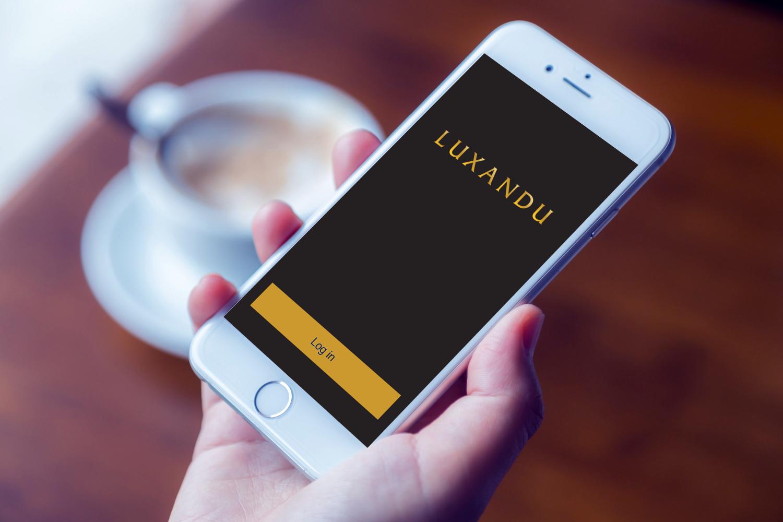 Sample branding #2 for Luxandu