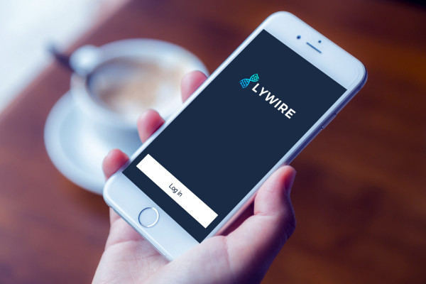 Sample branding #2 for Lywire