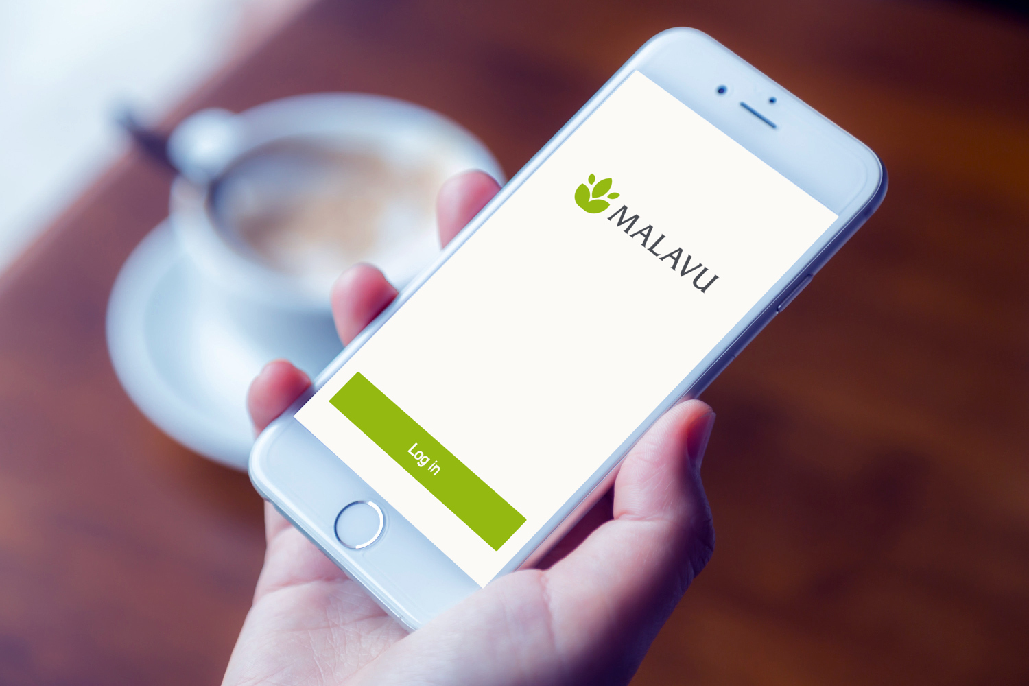 Sample branding #3 for Malavu