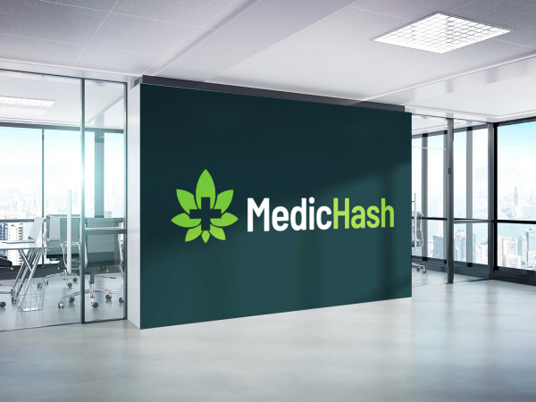 Sample branding #2 for Medichash