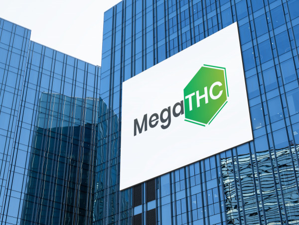 Sample branding #2 for Megathc