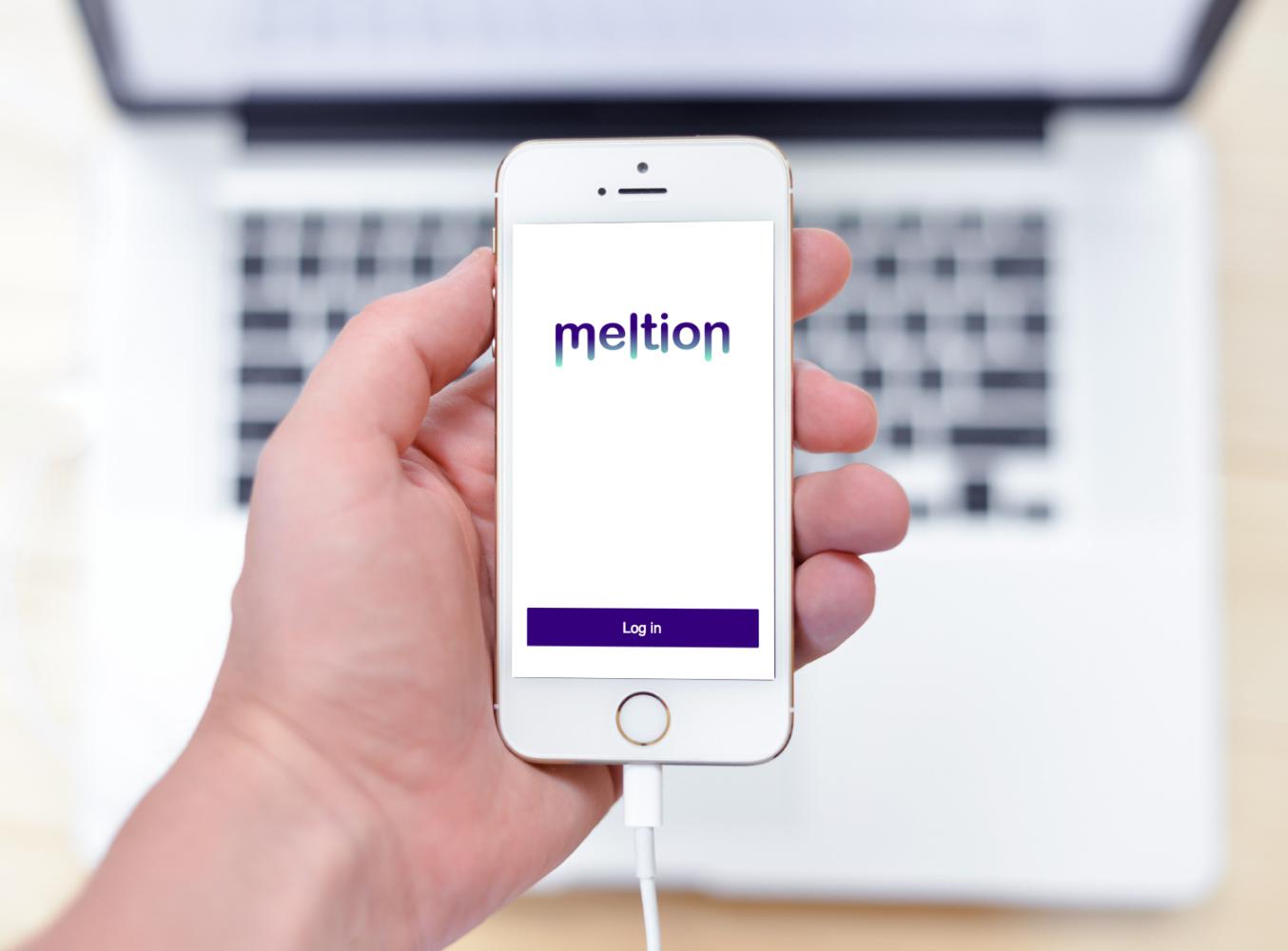 Sample branding #2 for Meltion