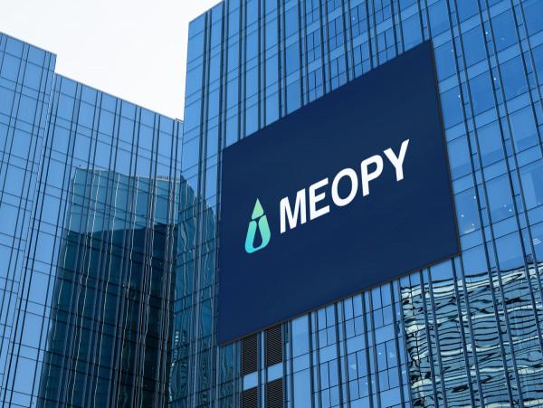 Sample branding #2 for Meopy