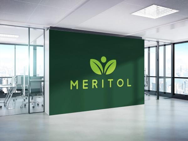 Sample branding #2 for Meritol