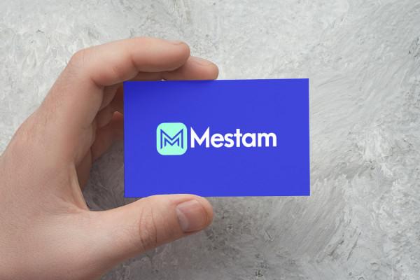 Sample branding #1 for Mestam