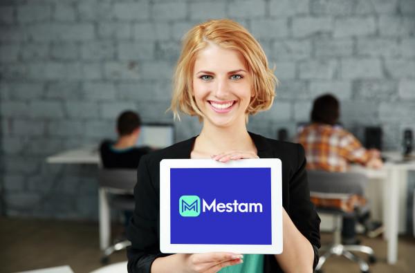 Sample branding #3 for Mestam