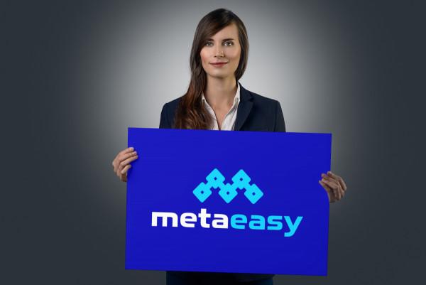 Sample branding #1 for Metaeasy