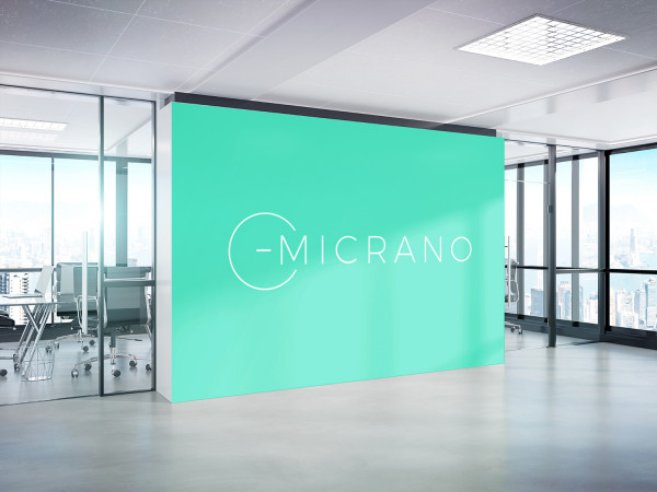 Sample branding #2 for Micrano