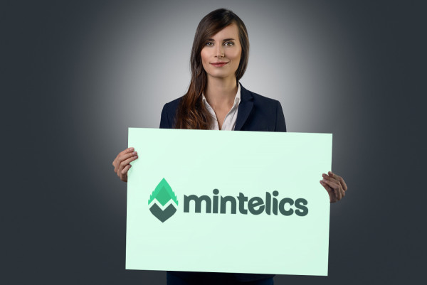 Sample branding #2 for Mintelics