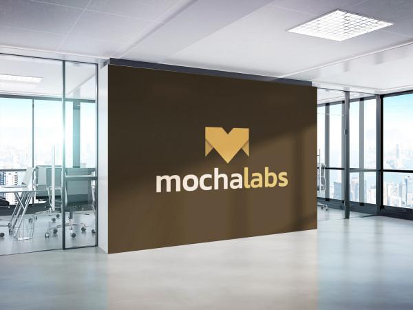 Sample branding #1 for Mochalabs