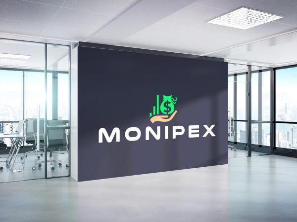 Sample branding #3 for Monipex
