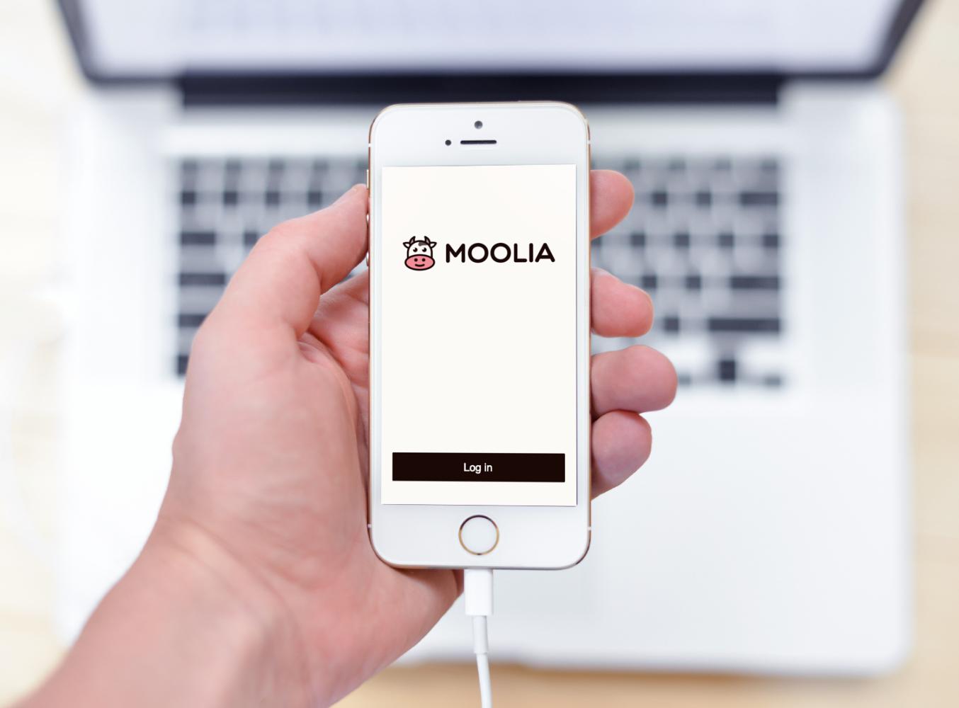 Sample branding #3 for Moolia