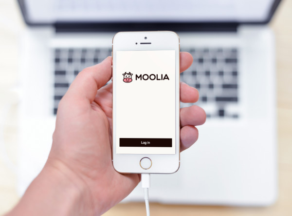 Sample branding #1 for Moolia