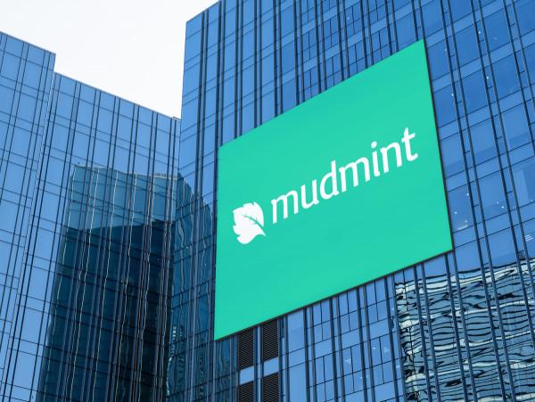 Sample branding #1 for Mudmint