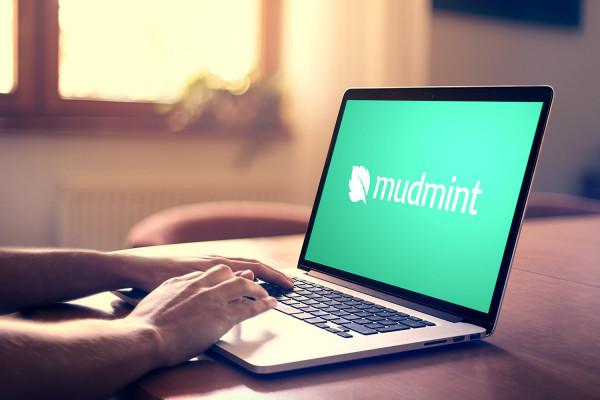 Sample branding #2 for Mudmint
