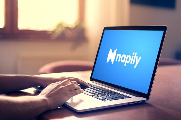 Sample branding #2 for Napily