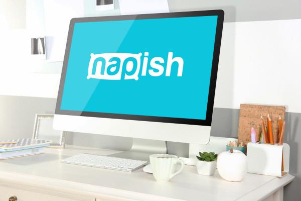 Sample branding #1 for Napish