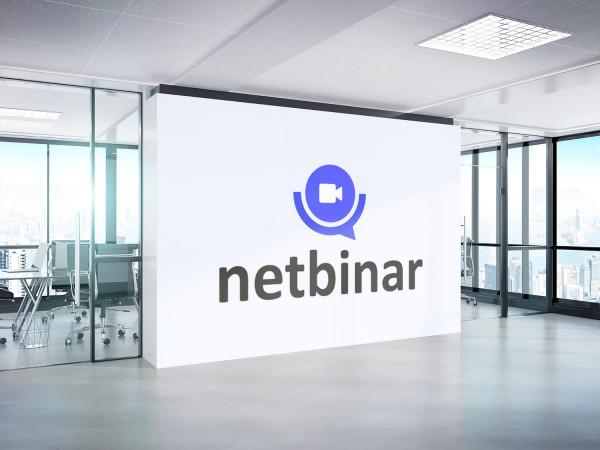 Sample branding #1 for Netbinar