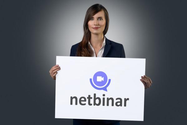 Sample branding #3 for Netbinar