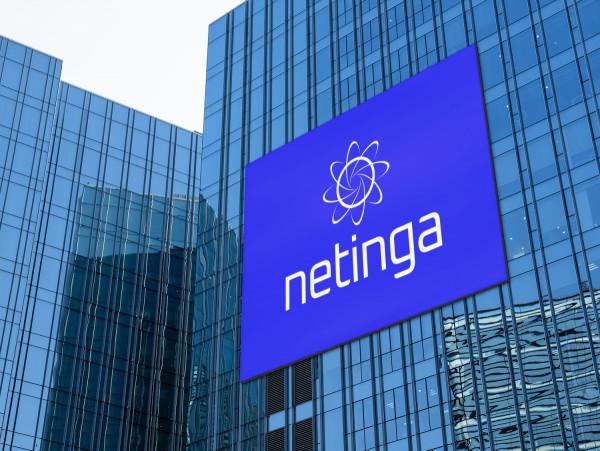 Sample branding #3 for Netinga