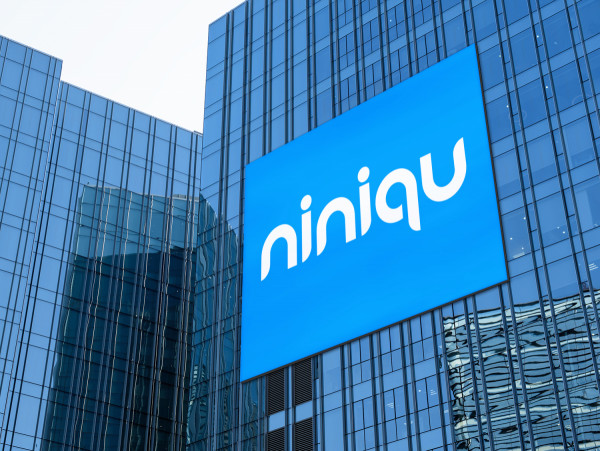 Sample branding #1 for Niniqu